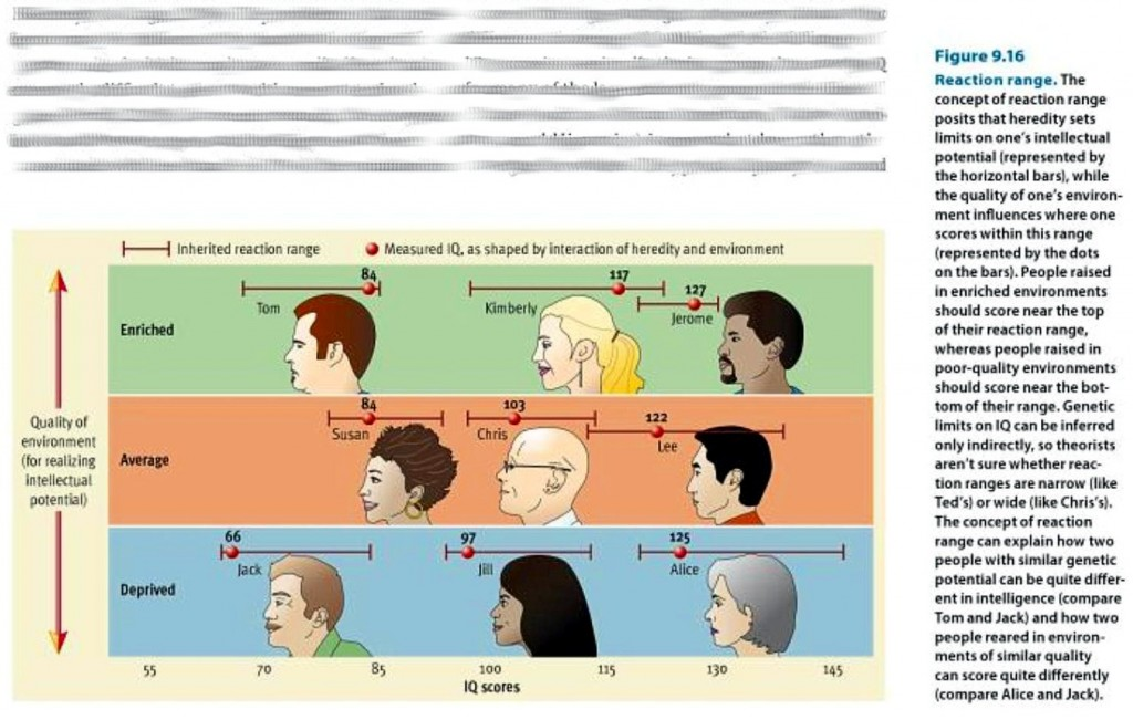 do heredity and environment affect intelligence
