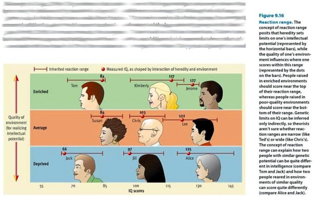 Reaction Range of IQ - Heredity vs Environment